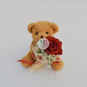 Mr.Brown Bear I