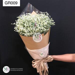 GR009