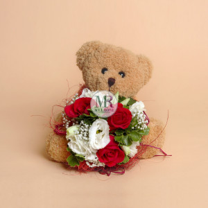 Mr.Brown Bear Very Special II