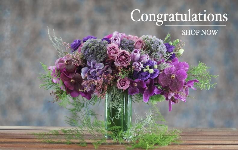 Congratulations English